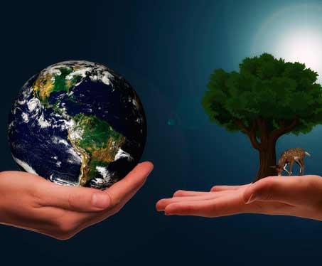 Vertidos Rioja mundo y árbol